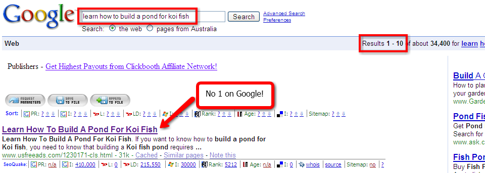 No. 1 on Google with the Bum Marketing Method